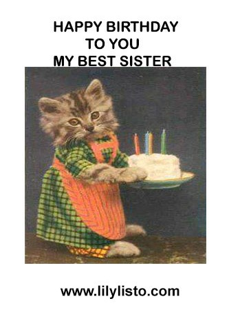 cat funniest image for sister birthday