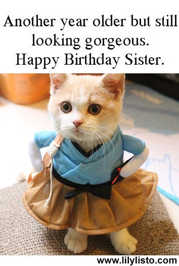funny and cute pic for sister birthday