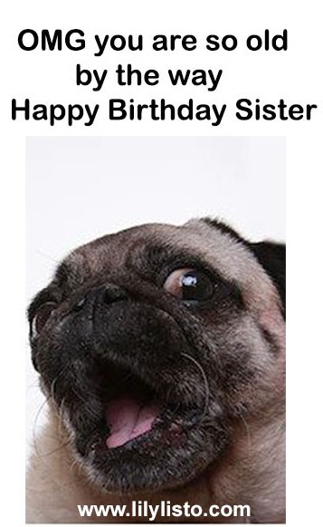 funny dog meme and image for sister birthday